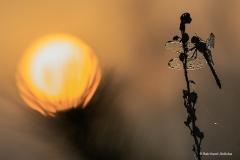 02_Sonnenaufgang