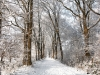 ostfrieslandwanderweg-bei-hesel