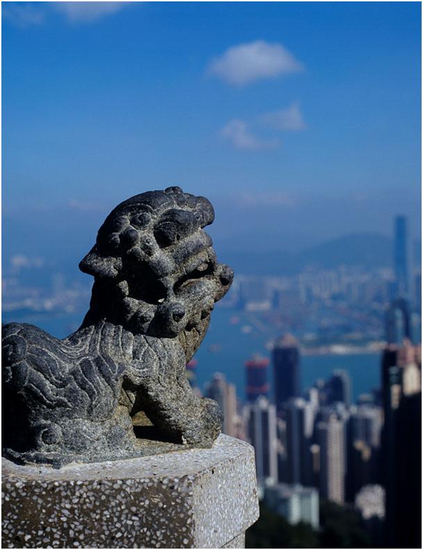 Über den Dächern Hongkongs