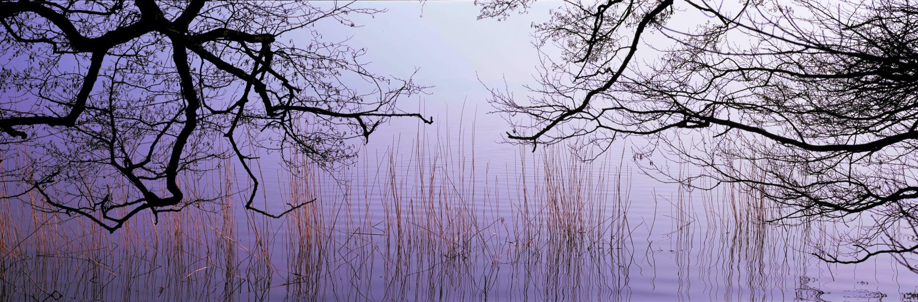 Spolsener-Moor-Sonnenaufgang-Febr-6