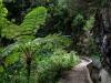 Madeira Juli 2012