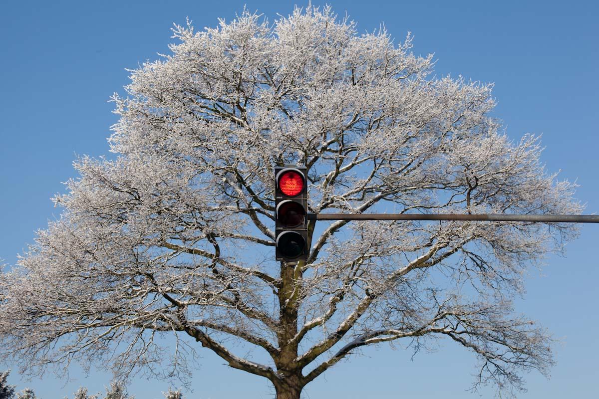 "Januar 2011:  Fotografische ""Wintermärchen"""
